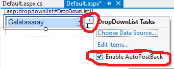 DropDownList-kullanimi2