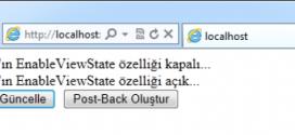 Asp.Net ViewState nedir nasıl kullanılır?