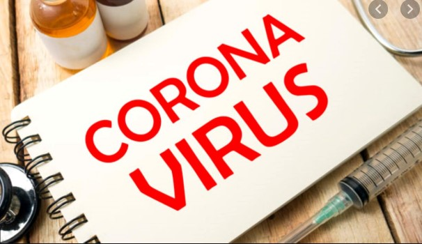 Korona virüs Hakkında